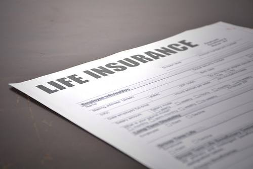 3 Key Differences between Whole and Term Life Insurance